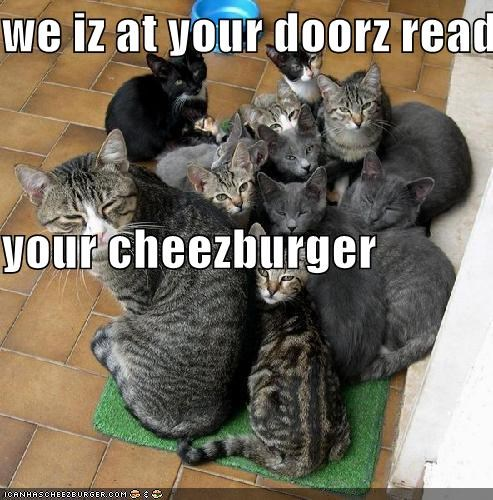 Cheezburger Image 4700256256