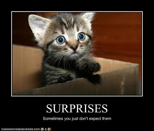 SURPRISES Sometimes you just don't expect them