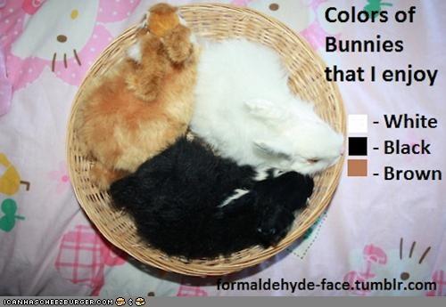 basket bunnehs bunnies charts colors enjoy graphs - 4700822272