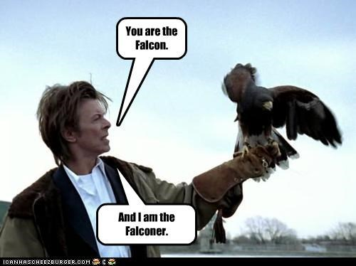 You are the Falcon. And I am the Falconer.