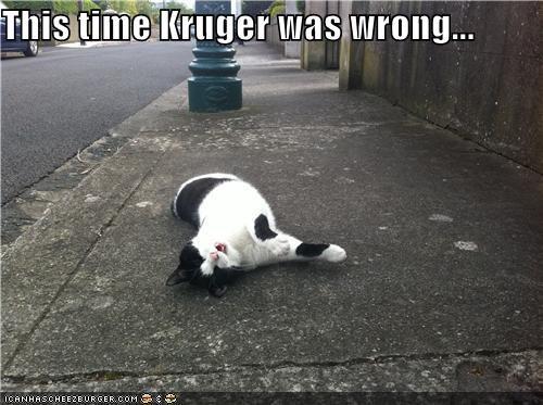 Cheezburger Image 4701443328