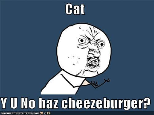 Cheezburger Image 4701600256