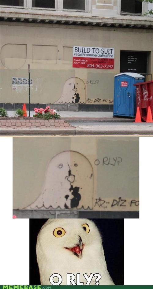 graffiti,IRL,Memes,o rly,Owl,srsly,ya rly