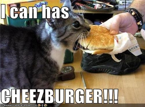 I can has  CHEEZBURGER!!!