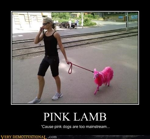PINK LAMB 'Cause pink dogs are too mainstream...