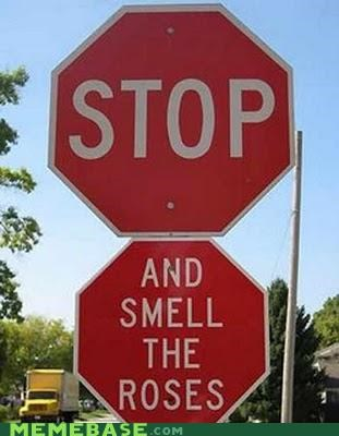 roses stop stop sign - 4702637312