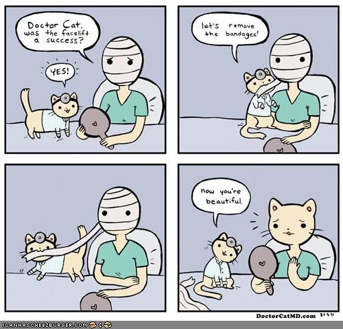 comics doctor cat doctors facelift plastic surgery - 4703280896