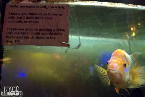 alcohol ets fish tank jokes not funny notes