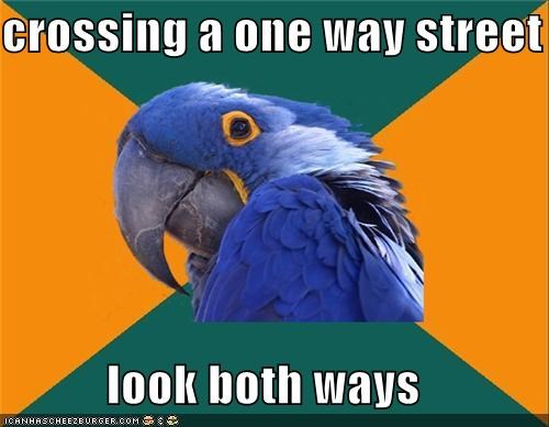 crossing,look,one way,Paranoid Parrot,street,ways