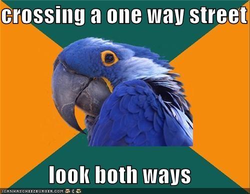 crossing look one way Paranoid Parrot street ways - 4703765504