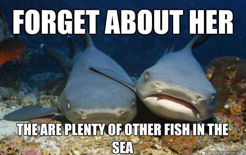 Compassionate Shark Frien,macro,meme