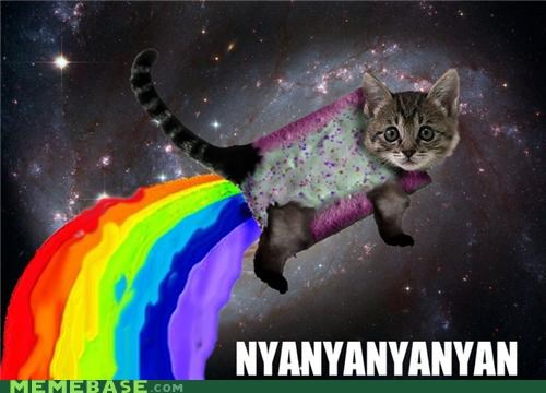 animemes,IRL,Memes,Nyan Cat,pop tart,rainbows