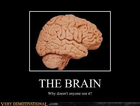 brain idiots wtf - 4703904512