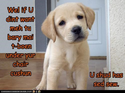 buried bury chair cushion labrador puppy said should have t-bone under - 4704072960