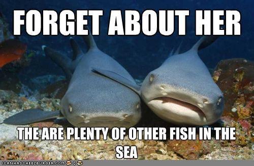 breakup caption compassion depressed feel better relationships sea sharks - 4704131072