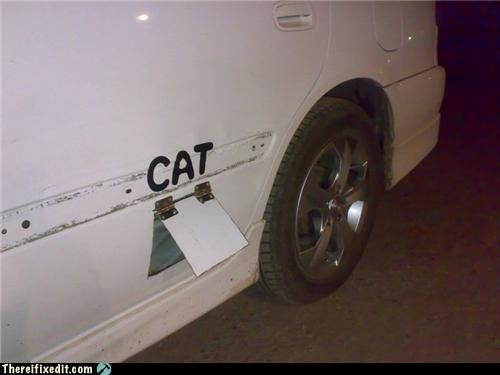 animals cars Cats dual use gasoline - 4705672960