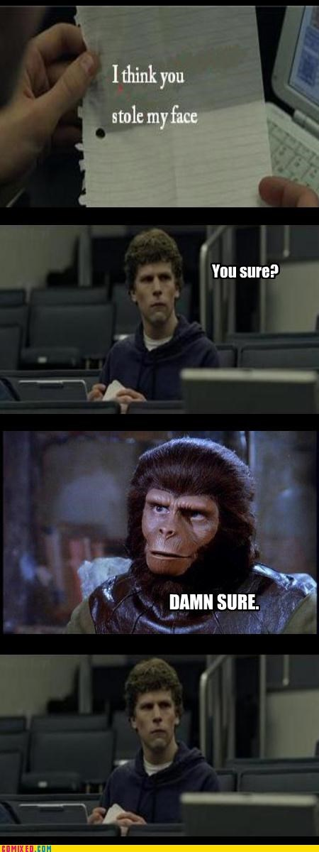 apes,face,facebook,gorilla,social network,the internets