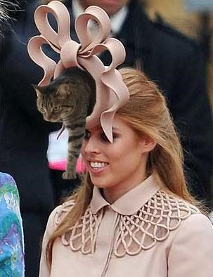 meme Princess Beatrice royal wedding Royally Ridiculous Hat