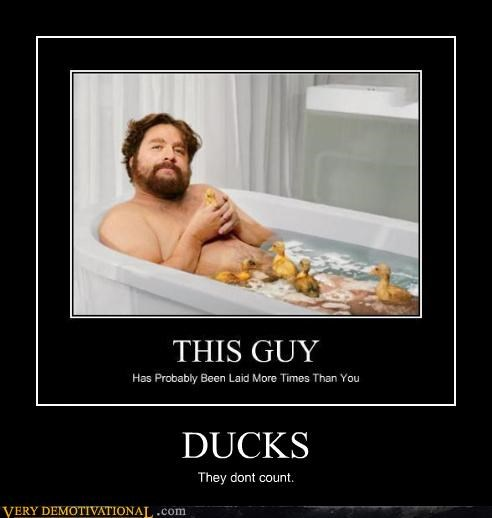Zach Galifianakis ducks sexy times funny
