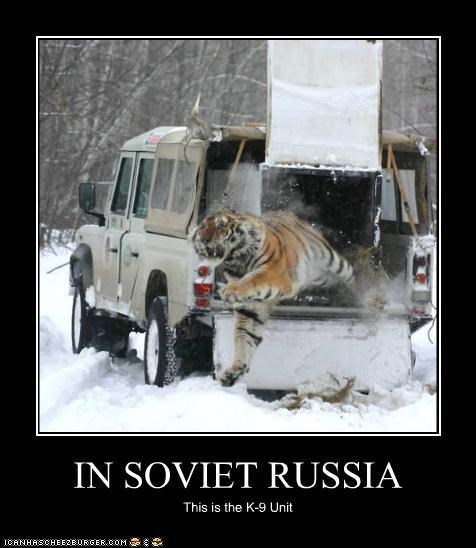 IN SOVIET RUSSIA This is the K-9 Unit
