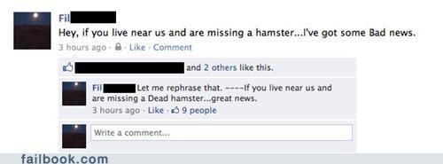 pets hamsters phrasing - 4708824832