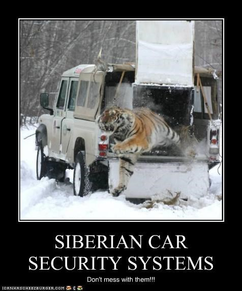 SIBERIAN CAR SECURITY SYSTEMS Don't mess with them!!!