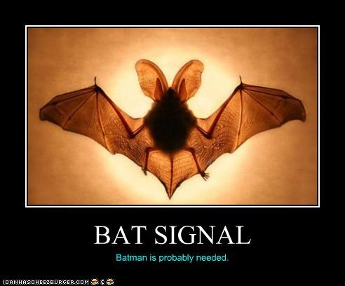 BAT SIGNAL Batman is probably needed.