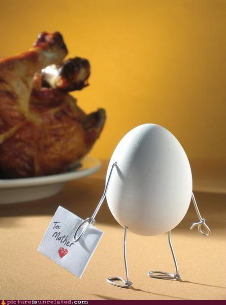 chicken egg wtf - 4709539328
