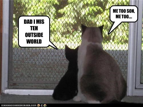 DAD I MIS TEH OUTSIDE WORLD ME TOO SON, ME TOO....