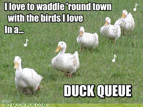 cee lo,cee-lo green,duck,ducks,f you,Hall of Fame,literalism,lyrics,parody,queue,rewritten,single,song