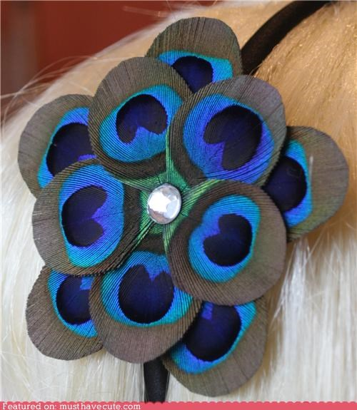 accessory feathers Flower headband peacock - 4710627072