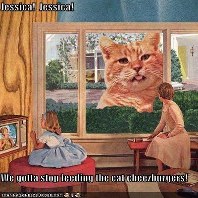 Cheezburger Image 4711111936