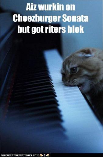 Aiz wurkin on Cheezburger Sonata but got riters blok