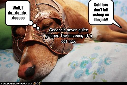 Soldiers don't fall asleep on the job!! Well, i do....do...do....dooooo Generals never quite gripped the meaning of a cat nap.