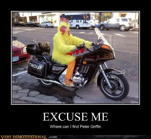 chicken,motorcycle,Peter Griffin