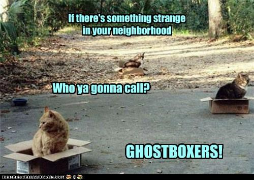 If there's something strange in your neighborhood Who ya gonna call? GHOSTBOXERS!