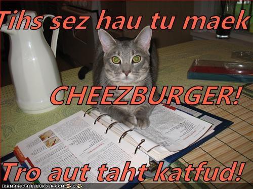 Cheezburger Image 4714582528