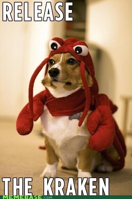 animemes,dogfort,kraken,lobster,Memes,release
