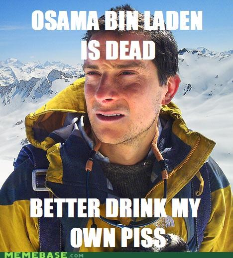 bear,bear grylls,beers,champagne,drink,osama