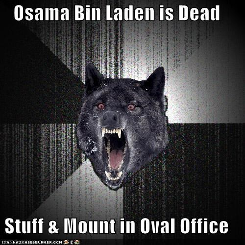 Insanity Wolf,mission accomplished,osama,stuff,taxidermy