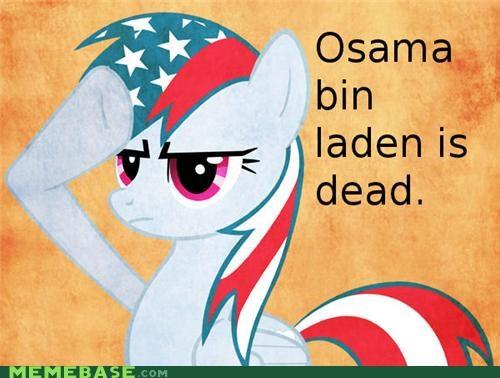 america brony Memes osama ponies - 4716004608