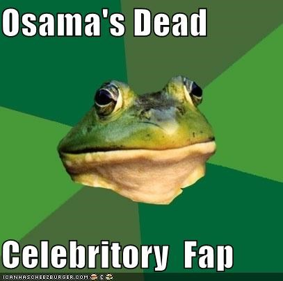 accomplished,emission,foul bachelor frog,mission,osama