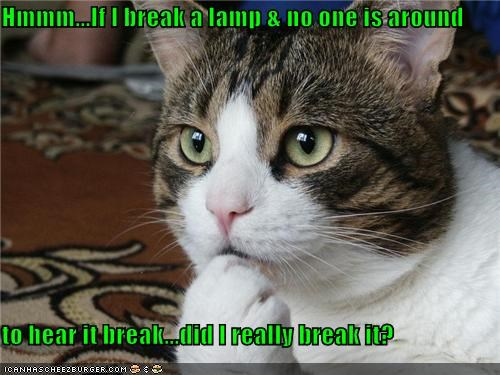 Hmmm...If I break a lamp & no one is around to hear it break...did I really break it?