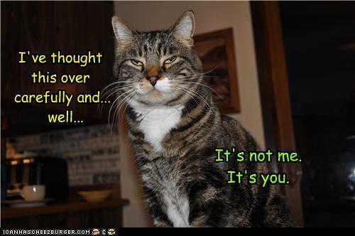 Cheezburger Image 4717390336