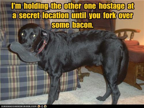 I'm holding the other one hostage at a secret location until you fork over some bacon.