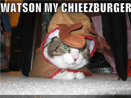 Cheezburger Image 4717692160