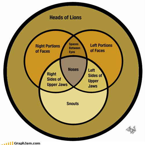 anatomy,lion,lion king,venn diagram