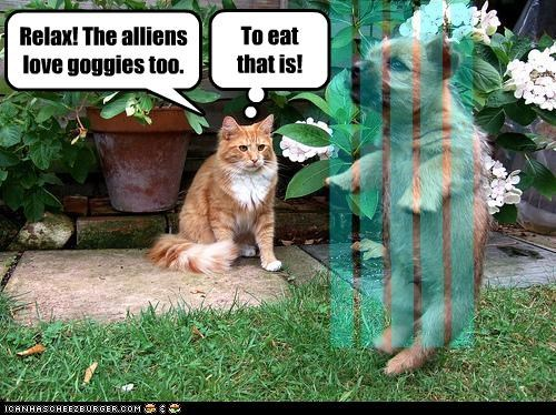 lllll lllll lllll lllll Relax! The alliens love goggies too. To eat that is!