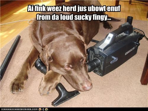Ai fink weez herd jus ubowt enuf from da loud sucky fingy...