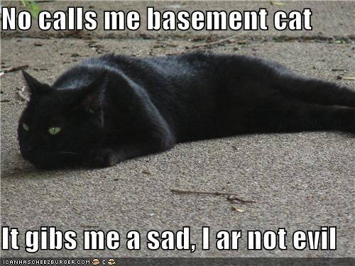 No calls me basement cat  It gibs me a sad, I ar not evil